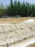 Il PVC della rete metallica di Gabion ha ricoperto di Gavlanized tuffato caldo
