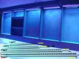 RGB DMX LED 벽 세탁기 점화