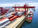 De betrouwbare Agent die van de Logistiek van Guangzhou aan Noorwegen verschepen