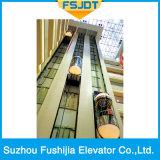 Ascenseur guidé panoramique avec la machine sans engrenages de traction