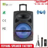 """Feiyang/Temeisheng 12 """" batteriebetriebenes aufgebaut im Verstärker DJ-Lautsprecher"""