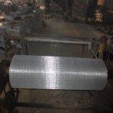 30 rete metallica saldata galvanizzata elettrica di pollice del rullo 2X2 del tester