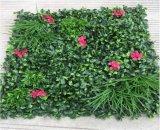 Piante di alta qualità e fiori artificiali del giardino verticale Gu20170217201849