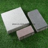 Vário tijolo colorido da modalidade da combinação para a maneira do pé/pavimento lateral