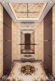 3~4의 지면을%s 홈과 별장 건물을%s Toyon 별장 엘리베이터