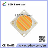 28*28/F23,5 COB Chip LED 30W luz de LED