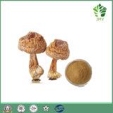 Естественный порошок Chrysophanol 98% выдержки ревеня