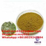 성 증강 인자 분말 Epimedium Flavone Icariin 단단한 산양 추출 5-%98%