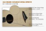 Aiersi 특별한 주문품 Cutway 모든 단단한 음향 기타