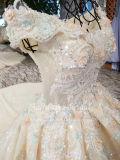 Aoliweiyaシャンペンの夜会服のウェディングドレス