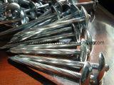 De Prijs van de Bevordering van China, de Spijkers van het Dakwerk van de Paraplu voor Houten Product