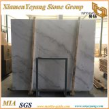 Polidos China Carrara/Guangxi White Bianco Crown laje de mármore/Quadros