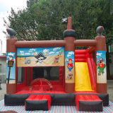 아이의 생일 파티를 위한 주문을 받아서 만들어진 작은 PVC 팽창식 뛰어오르는 집