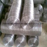 Une grande flexibilité des prix de gros fil galvanisé maille carrée