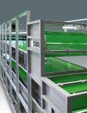 De Behandeling van de Mest van de kip - de Drogende Machine van de Mest van de Kip voor de Landbouw van het Gevogelte