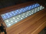 Éclairage 162W haute puissance Blanc + LED Bleu Aquarium