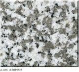 Galette et tuile blanches de granit de fleur de G439 Big