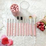 il professionista 12PCS compone l'insieme di spazzole