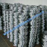 Fil en acier à faible teneur en carbone avec certificat ISO