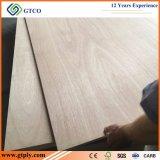 madera contrachapada laminada de la base 18m m del álamo del roble rojo del grado 3A para el mercado de Suramérica