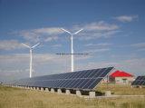 Schaufel-Wind-Turbine-Generator des variablen Abstand-30kw