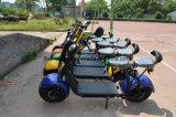 Scooter eléctrico simple para la vida de la ciudad 60V/20Ah