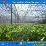 Парник Hidroponica крышки низкой стоимости пластичный для большой расти зоны