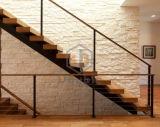 Escalera con el paso de progresión de madera/recto interior