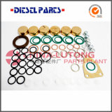 Ve Bosch Injector Pump Seal Kit-Diesel Injector Pump Fornecedores
