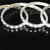 Luz de 5050 SMD LED con alto lumen y 2 años de garantía