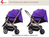 Passeggiatore del bambino della doppia sede per i gemelli
