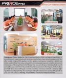 """Verdoppeln """" beste Doppel-SpitzenTechnologie-Audiolautsprecher PA-15 von China"""