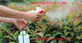 Spruzzatore manuale di innesco del giardino del prato inglese di telecomando di Ilot