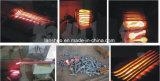 Het Verwarmen van de Inductie van de Fabrikant van Rusland de Professionele Machine van het Smeedstuk van het Metaal van de Machine