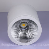 50W LED montato di superficie Downlight con Ce/RoHS approvato