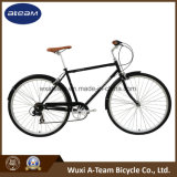 2017 [نو برودوكت] [هيغقوليتي] مدينة درّاجة /Bicycle