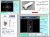 Sistema di disegno del reticolo del ricamo di Dahao Emcad