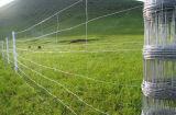 Frontière de sécurité de Glassland Saperation de frontière de sécurité de ferme/frontière de sécurité de Kraal