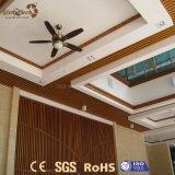 Ontwerpen van het Plafond van pvc van de Installatie van de lage Prijs de Snelle Vuurvaste voor de Decoratie van het Huis