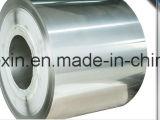Vente chaude galvanisée plongée chaude de bobine d'acier inoxydable