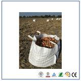 中国PPの十字の角のループタイプBの通気性のジャンボ袋