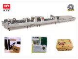 Velocidade alta proteção pequena caixa dobrável máquina de colagem (XCS-800PC)