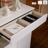 Gabinete de armazenamento de sapato de porta de madeira de design moderno (GSP14-002)