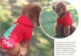 Vestiti del cane di natale