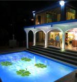 Novo projetado Outdoor / Garden Decoration 2 em 1 luz de projeção de caleidoscópio