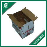 Gewölbte Großhandelsfrucht-verpackenkästen b-Flöte mit Belüftung-Fenster