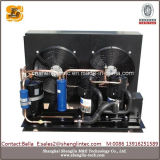 Hot Selling Condensing Unit for Freezer