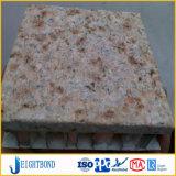 装飾的なパネルの花こう岩は屋外の壁の装飾のためのアルミニウム蜜蜂の巣のパネルを好む