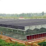 De landbouwSerre Van uitstekende kwaliteit van het Glas Multispan