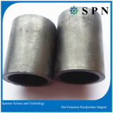 Magnete permanente di NdFeB/magnete urgente caldo dell'espulsione di NdFeB del magnete di NdFeB